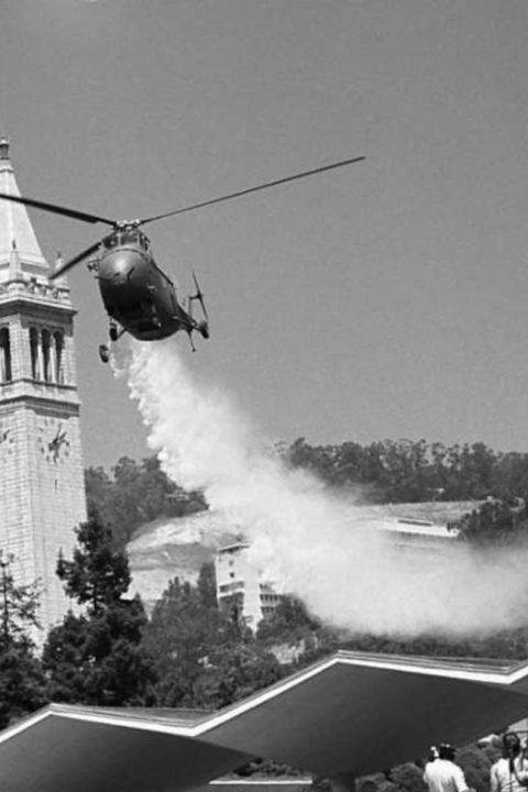 Berkeley 1969: High Point Of The Revolution